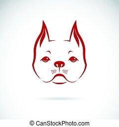 háttér., fehér, vektor, kutya, arc