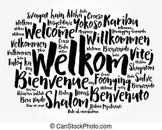 háttér, felhő, welkom, nyelvek, szó, afrikaans), (welcome, különböző, fogalmi