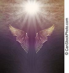 háttér, isteni, gyógyulás, fény, angel szárny