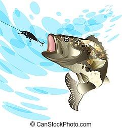 háttér, loccsanás, halászat, sügér, fish, víz, vobler, basszus