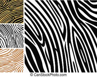 háttér példa, -, zebra, állat bőr print