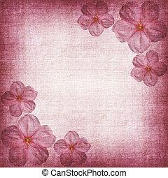 háttér, rózsaszínű