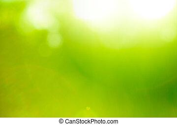 háttér, természet, elvont, flare)., zöld, (sun