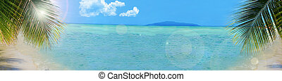 háttér, tropical tengerpart, transzparens