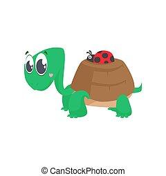 héj, katicabogár, tengeri teknős, csinos, szállítás