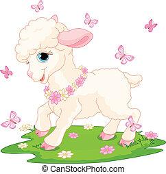 húsvét, pillangók, bárány
