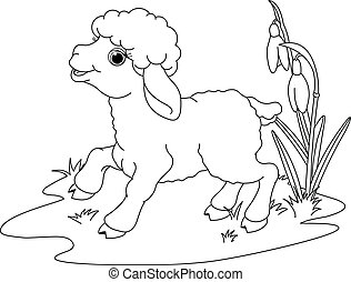 húsvét, színezés, oldal, lamb.