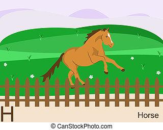 h, ló, állat, abc
