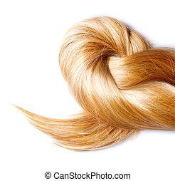 haj, elszigetelt, szőke, egészséges, fehér