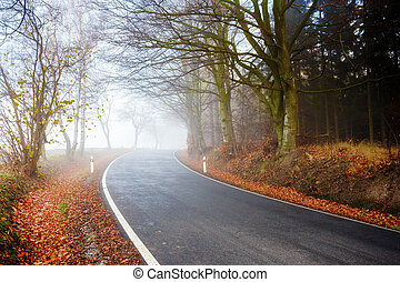 haladó, út, köd