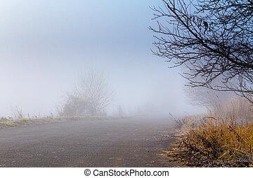 haladó, köd, út