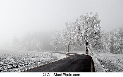 haladó, tél, út, köd