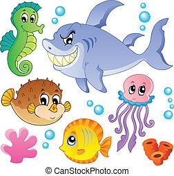 halfajták, állatok, 4, gyűjtés, tenger
