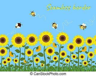 határ, illustration., seamless, vektor, kék, ellen, sárga, napraforgók, nektár, zöld, méhek, gyűjtés, sky., horizontális, fű