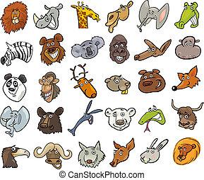 hatalmas, állhatatos, gazdag koncentrátum, vad állat, karikatúra