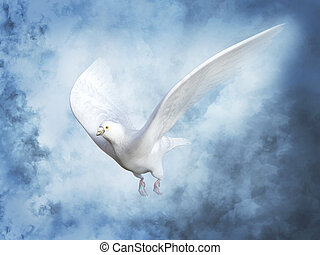 heaven., béke, vakolás, fehér galamb, 3