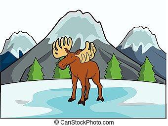 hegy, őz, színhely, jég