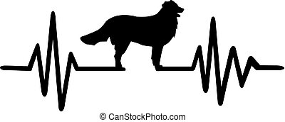 hegy, egyenes, bernese, kutya, szívdobbanás