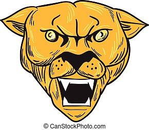 hegy, fej, mérges, puma, oroszlán, rajz