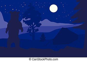 hegy, gyalogló, tábor, hord, erdő, éjszaka