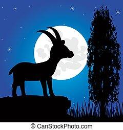 hegy, sawhorse, hold, árnykép, éjszaka