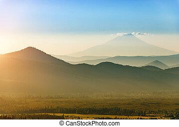 hegy. shasta