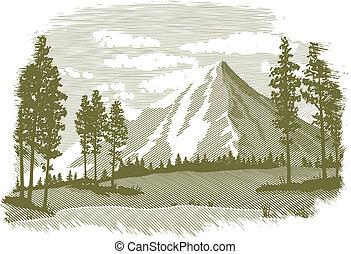 hegy tó, fametszet, színhely