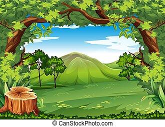 hegy, zöld, színhely, bitófák