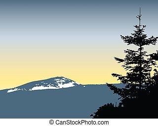 hegyek, hó