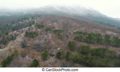 hegyek, menekülés, felett, vadászik., erdő, kevert, antenna