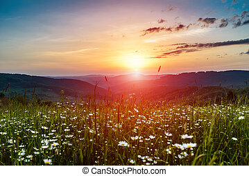 hegyek, reggel, emelkedik nap
