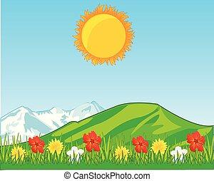 hegyek, virág, hát, tisztás, terv, év