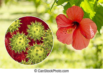 NATURLAND Csipke-hibiszkusz tea 20 filter - Immunerősítő teák - Gyógynövénysziget Bio webáruház