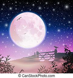 hold ég, éjszaka