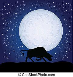 holdfény, fekete, bika