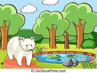 hord, erdő, poláris, színhely