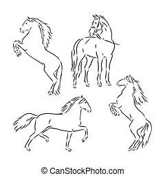 horse., ábra, fehér, vektor, fekete, skicc, ló