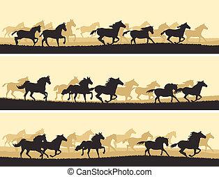 horses., ábra, csorda