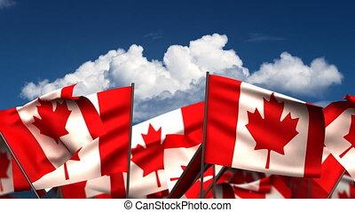 hullámzás, zászlók, kanadai