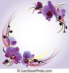 ibolya, köszönés kártya, orhideák