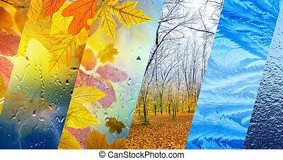 időjárás, bukás, tél, fogalom, előre lát