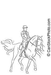 idomítás, lovas, ló