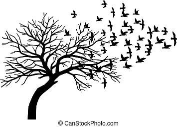 ijedős, árnykép, repülés, fa, csupasz, fekete, falka, madarak