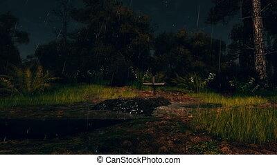 ijedős, esőerdő, éjszaka, friss, komoly, 4k