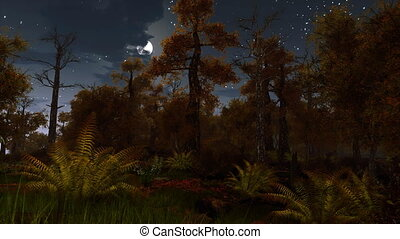 ijedős, holdtölte, ősz erdő, éjszaka, 4k