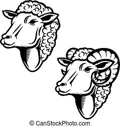 illustration., elem, döngöl, állhatatos, jel, tervezés, sheep, embléma, cégtábla., fej, head.