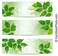 illustration., természet, eredet, három, leaves., vektor, zöld háttér