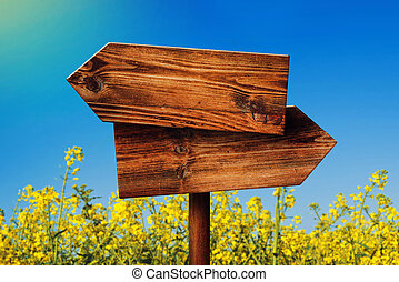 irány, ellentétes, fából való, aláír, falusias, mező, rapeseed, tiszta