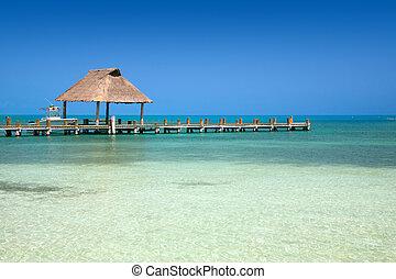 isla, contoy, móló, mexikó