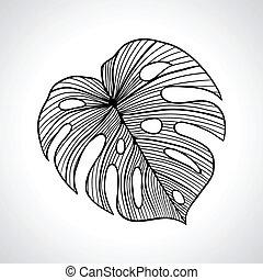 isolated., makro, levél növényen, pálma, fekete